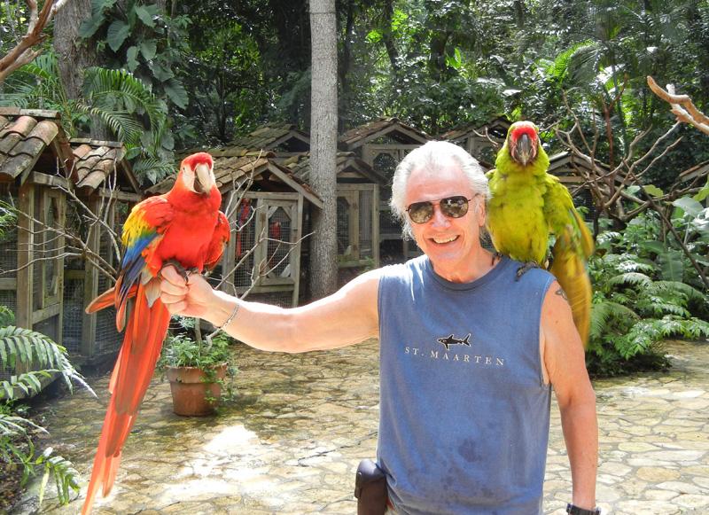 Macaw Mountain